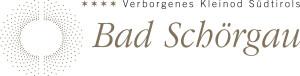 DT-LogoBS_RGB