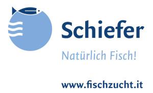 schiefer_logo_www_01-kopie
