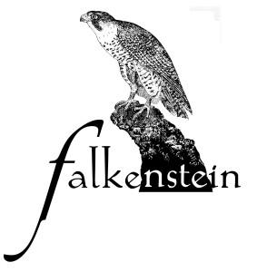 logo_falke-und-schriftzug-kopie